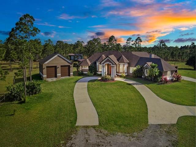 14955 95th Street, Fellsmere, FL 32948 (MLS #235965) :: Team Provancher | Dale Sorensen Real Estate