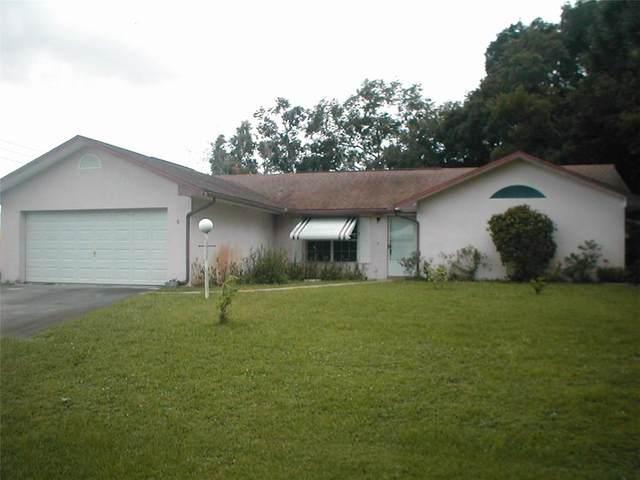 6 N Orange Street, Fellsmere, FL 32948 (MLS #245442) :: Team Provancher | Dale Sorensen Real Estate