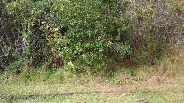 1483 Bevan Drive, Sebastian, FL 32958 (MLS #240276) :: Billero & Billero Properties