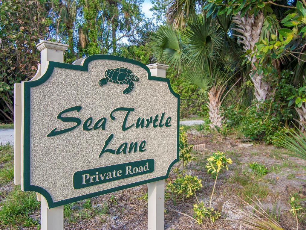 2245 Sea Turtle Lane - Photo 1