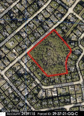XXX Weldon Street SE, Palm Bay, FL 32909 (MLS #219956) :: Billero & Billero Properties