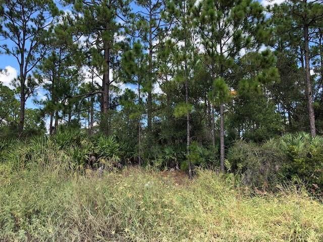 13020 85th Street, Fellsmere, FL 32948 (MLS #225986) :: Billero & Billero Properties