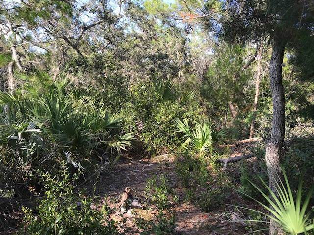 0000 Fleming Grant Road, Micco, FL 32949 (MLS #226052) :: Billero & Billero Properties