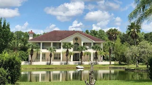 12650 77th Street, Fellsmere, FL 32948 (MLS #235954) :: Team Provancher | Dale Sorensen Real Estate