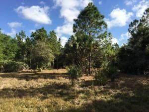 00 Old Ffa Road, Fort Pierce, FL 34945 (MLS #237131) :: Billero & Billero Properties