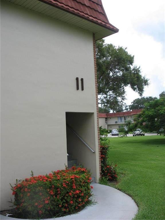 11 Vista Palm Lane - Photo 1