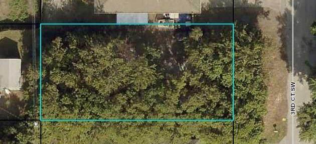 1645 3rd Court SW, Vero Beach, FL 32962 (MLS #246975) :: Dale Sorensen Real Estate