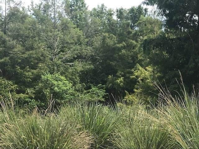 141 SW Chapman Avenue, Port Saint Lucie, FL 34984 (MLS #247146) :: Dale Sorensen Real Estate