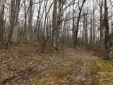 2035 Turning Tree Drive - Photo 6