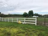 2214 County Road 250 - Photo 35