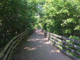 12099 Everwood Circle - Photo 41