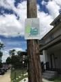 241 Parkview Avenue - Photo 4