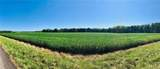 0 County Road 800 - Photo 3