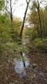 1043 Shady Creek Drive - Photo 9