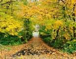 1609 Stafford Road - Photo 47