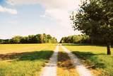 3195 County Road 1000 - Photo 54