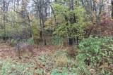 Lot 3 Bear Wallow Hill Road - Photo 2