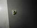 749 Roache Street - Photo 6