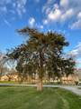 3025 Hickory Woods Drive - Photo 5