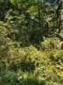 0 South Ridge Trail - Photo 11