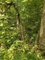 0 South Ridge Trail - Photo 15
