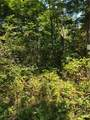 0 South Ridge Trail - Photo 10