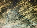 4165 Meadow Lane - Photo 3