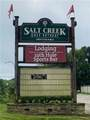 0 Salt Creek - Photo 12