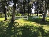 9723 County Road 300 - Photo 9