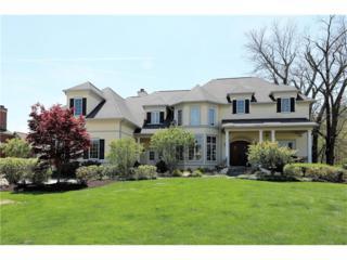 11315 Hanbury Manor Boulevard, Noblesville, IN 46060 (MLS #21480893) :: The Gutting Group LLC