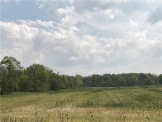 1840 N County Road 200 W, Danville, IN 46122 (MLS #21485321) :: Heard Real Estate Team