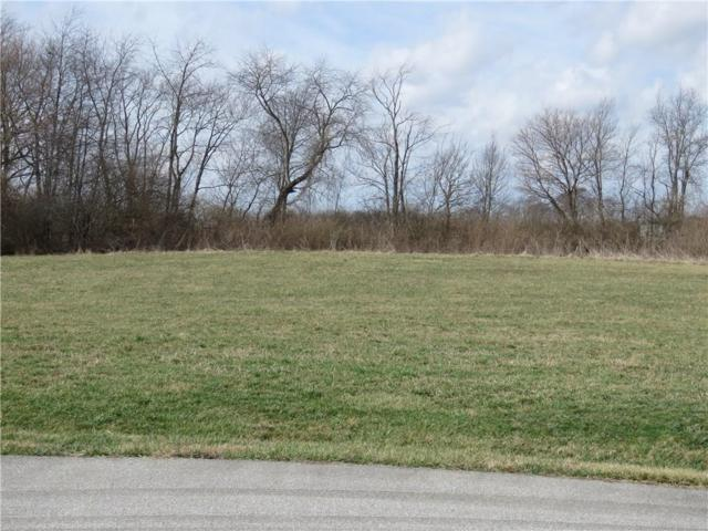 019 Hyland Meadow Drive, Knightstown, IN 46148 (MLS #21470220) :: The Evelo Team