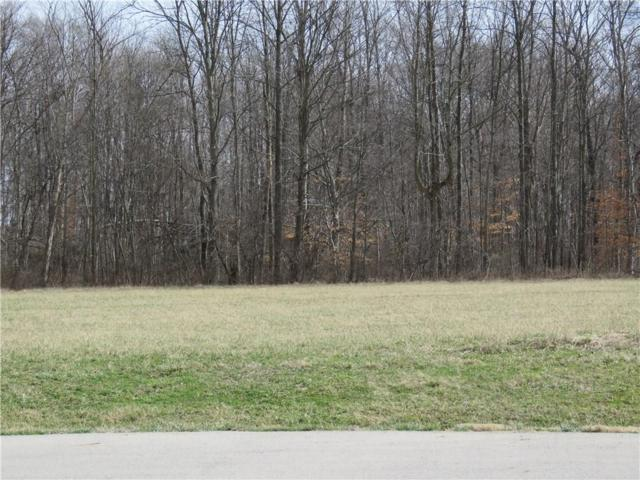 029 Hyland Meadows Drive, Knightstown, IN 46148 (MLS #21470300) :: AR/haus Group Realty