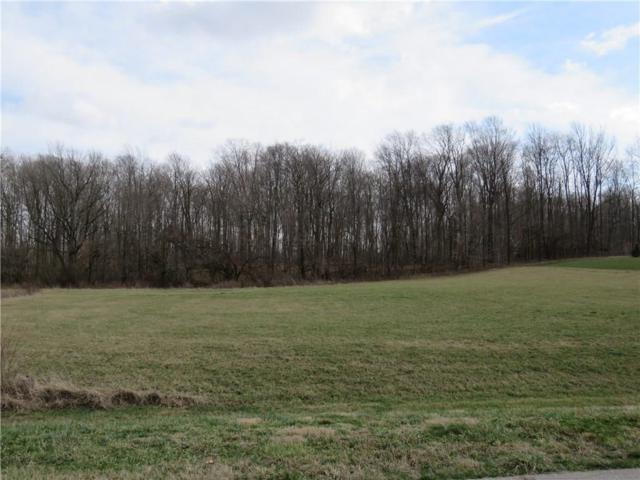 031 Hyland Meadows Drive, Knightstown, IN 46148 (MLS #21470305) :: AR/haus Group Realty