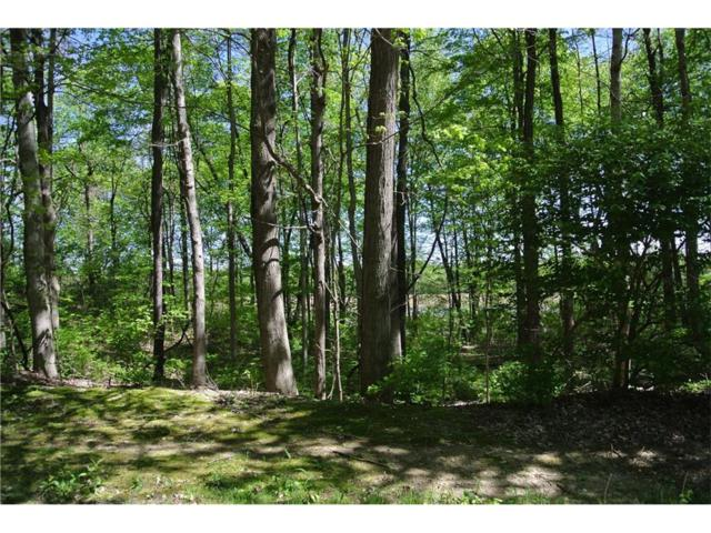 0 Knollwood Lane, Anderson, IN 46016 (MLS #21492073) :: The Evelo Team