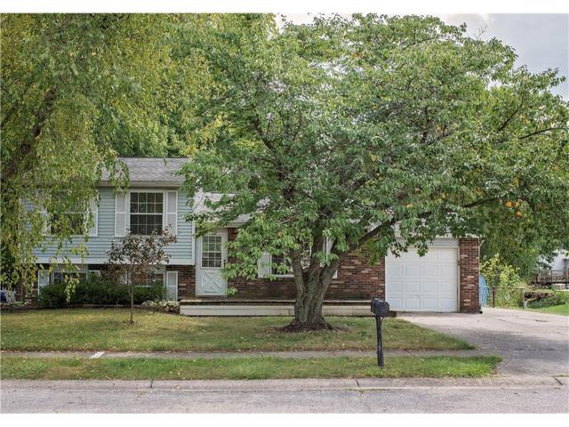 1305 Gumwood, Indianapolis, IN 46234 (MLS #21510394) :: Indy Scene Real Estate Team
