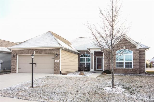 6177 Silver Maple Way, Zionsville, IN 46077 (MLS #21550848) :: Indy Plus Realty Group- Keller Williams