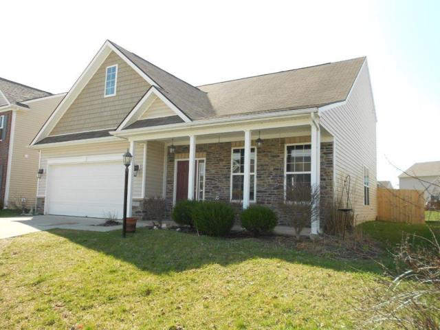12321 Cricket Song Lane, Noblesville, IN 46060 (MLS #21556735) :: Mike Price Realty Team - RE/MAX Centerstone