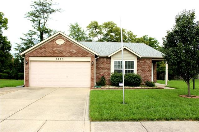 6123 Timberland Way, Indianapolis, IN 46221 (MLS #21595287) :: The Evelo Team