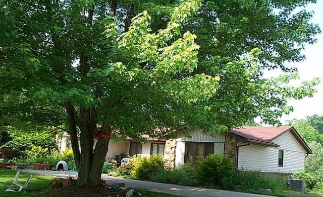7540 S 900 Road E, Elizabethtown, IN 47232 (MLS #21597520) :: FC Tucker Company