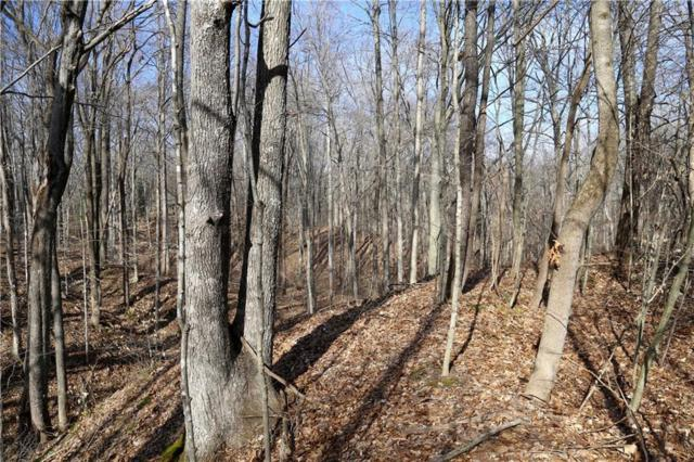 61 acres hwy 46 46, Nashville, IN 47448 (MLS #21598137) :: Mike Price Realty Team - RE/MAX Centerstone