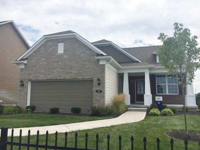 531 N Harstad Drive, Westfield, IN 46074 (MLS #21601821) :: The Indy Property Source