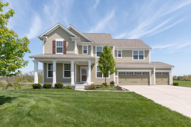 14379 Pendragon Way, Fishers, IN 46037 (MLS #21622090) :: AR/haus Group Realty