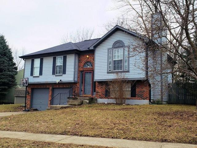 7367 Benoit Drive, Indianapolis, IN 46214 (MLS #21626197) :: Mike Price Realty Team - RE/MAX Centerstone