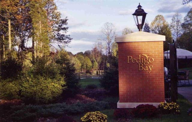 2710 (Lot 10B) E Pedigo Bay Drive E, Bloomington, IN 47401 (MLS #21634846) :: AR/haus Group Realty