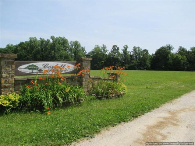 3711 W O Logging Trail, Martinsville, IN 46151 (MLS #21641206) :: David Brenton's Team