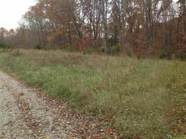 8157 S Mount Nebo Road, Columbus, IN 47201 (MLS #21641841) :: The Evelo Team