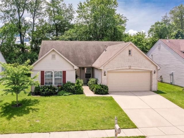 6145 Bristlecone Drive, Fishers, IN 46038 (MLS #21644366) :: The Evelo Team