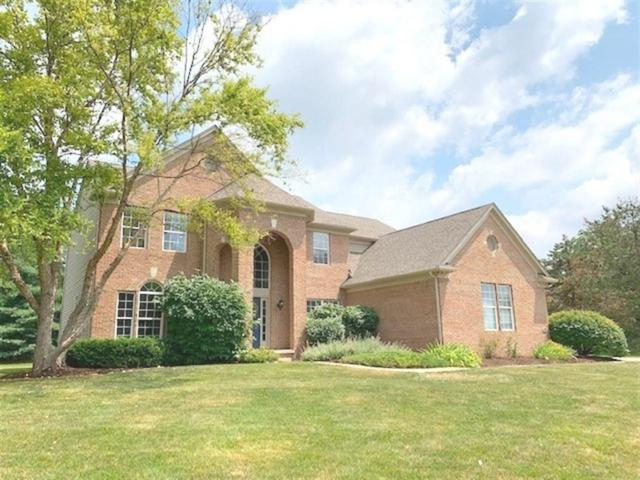 252 E Columbine Lane, Westfield, IN 46074 (MLS #21653264) :: HergGroup Indianapolis