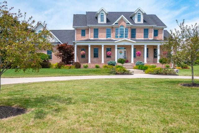 7681 W Mccolm Road, Gaston, IN 47342 (MLS #21659338) :: HergGroup Indianapolis